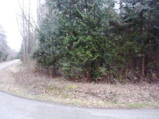 Two Lots Side By Side $17,900 EACH