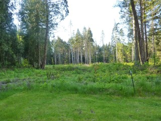 4.78 Private Acre Parcel