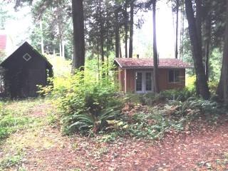 Small Woodsy Retreat
